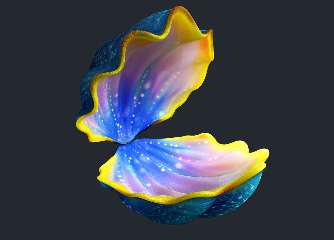 cartoon shell 3d model