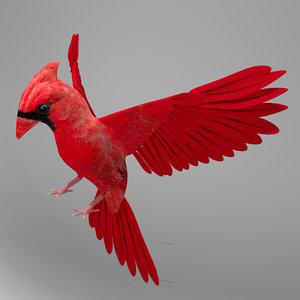 3d model northern cardinal