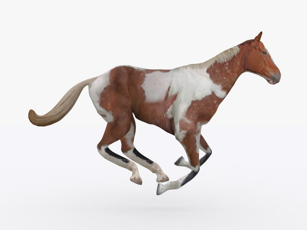 3ds rigged running horse