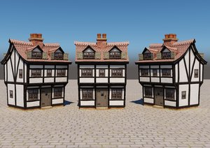old house cartoon 3d model