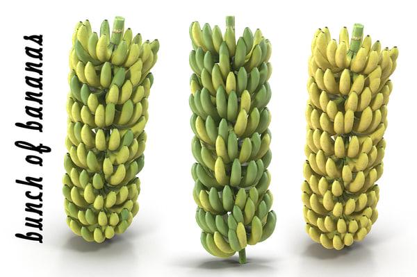 banana bunch banan 3d model