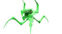 3d model alien