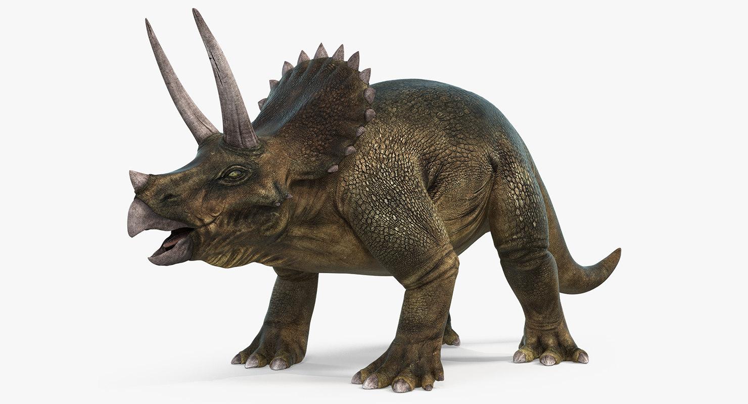 triceratops 3d max