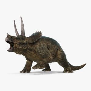 obj triceratops fighting pose