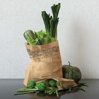 3d set artichoke asparagus