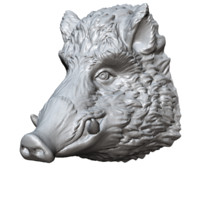 boar head sculpture