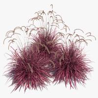 3d max pennisetum fireworks grass fountain