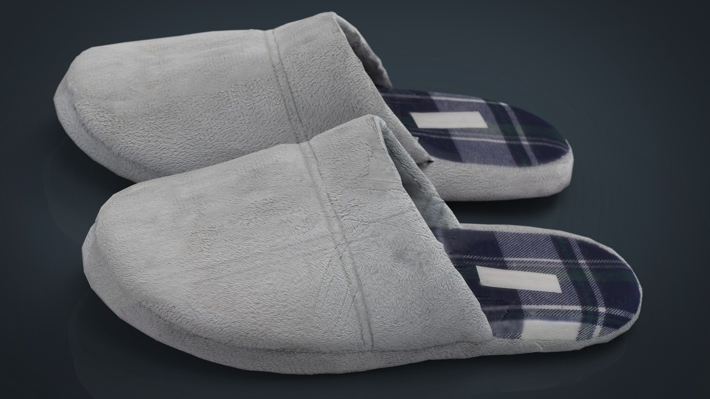 3d house slippers