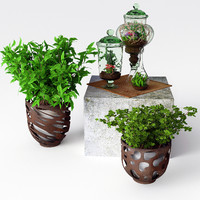 terrarium flower 3d max