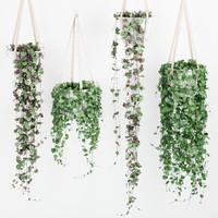 plant hanging pot 3d model