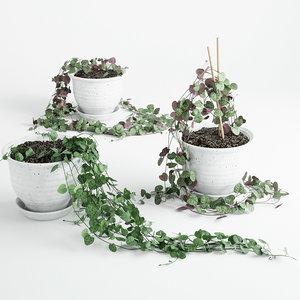 pot 3 3d model