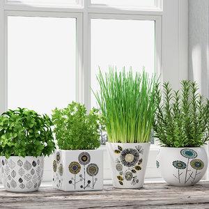 max herb pot