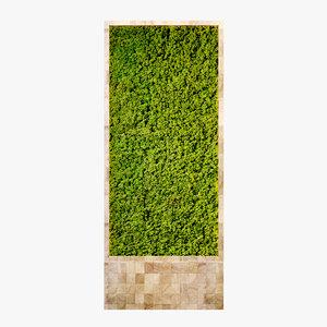 3d fytowall moss maps model