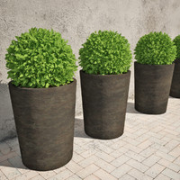 3d shrub pots model