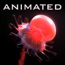 Jellyfish rigged animated, vray, corona.