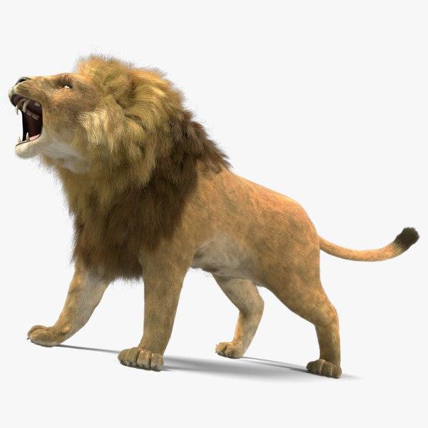 lion fur animation 3d 3ds