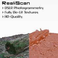 3d model realiscan photogrammetry rotten stump