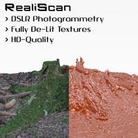 3d model realiscan photogrammetry small stump