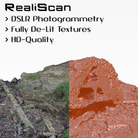 3d realiscan photogrammetry small stump