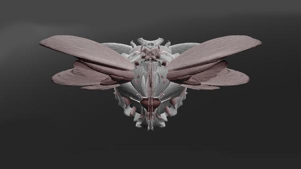3d sculptures model