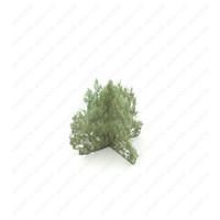 3d model of tree bush