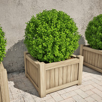 boxwood box 3d model