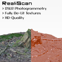 3d obj realiscan photogrammetry small stump