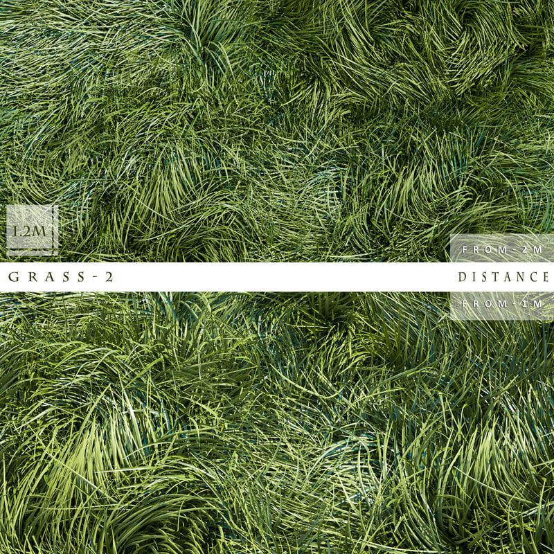 3d model grass 2