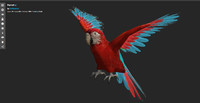 red macaw low-poly 3d blend