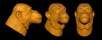 chimpanzee chimp head 3d model