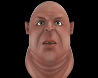 3d model ugly fatman head