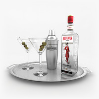 3ds beefeater gin set martini
