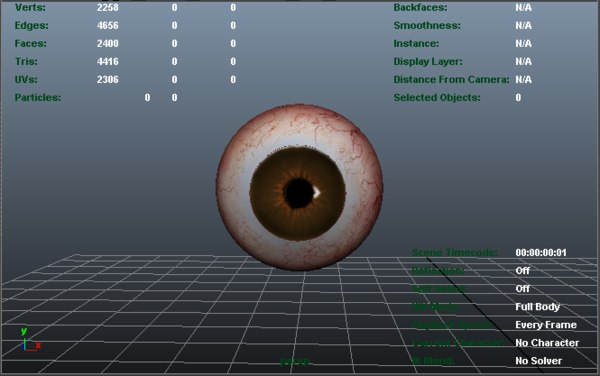 brown eye 3d model