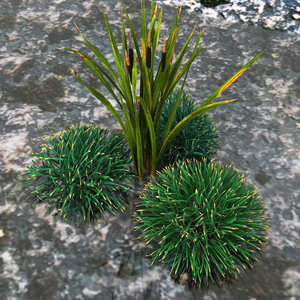 grass bush 3d max
