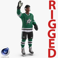 3d model of hockey player stars rigged