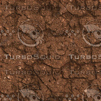 Cracked dirt texture