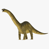 3d apatosaurus dinosaur model