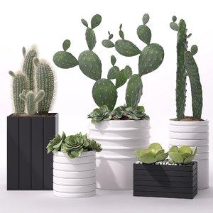 3d model contemporary plant
