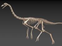 ornithomimus ornithomimid dinosaurs 3d model
