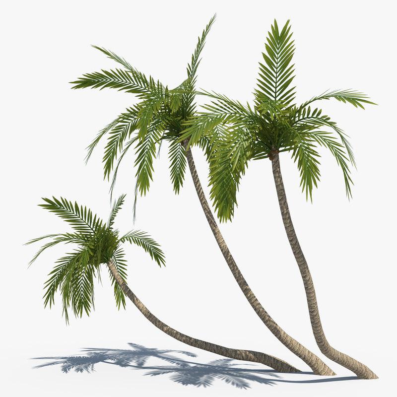 3d coconut palms set model