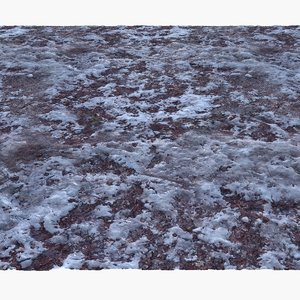 frozen winter ground surface 3d model