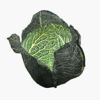 savoy cabbage max
