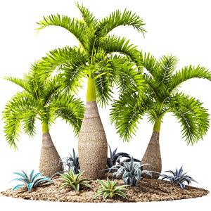 max palm hyophorbe lagenicaulis