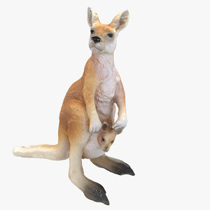 kangaroo max