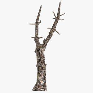 dead pine tree 3d obj