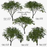 trees plant vegetation 3d model