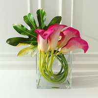 calla lilies max