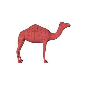 base mesh camel 3d model