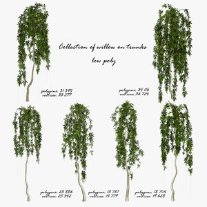 trees trunk 3d model