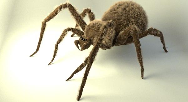 shaggy spider obj